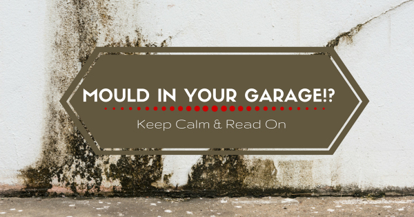 Dealing with Mould in Your Garage