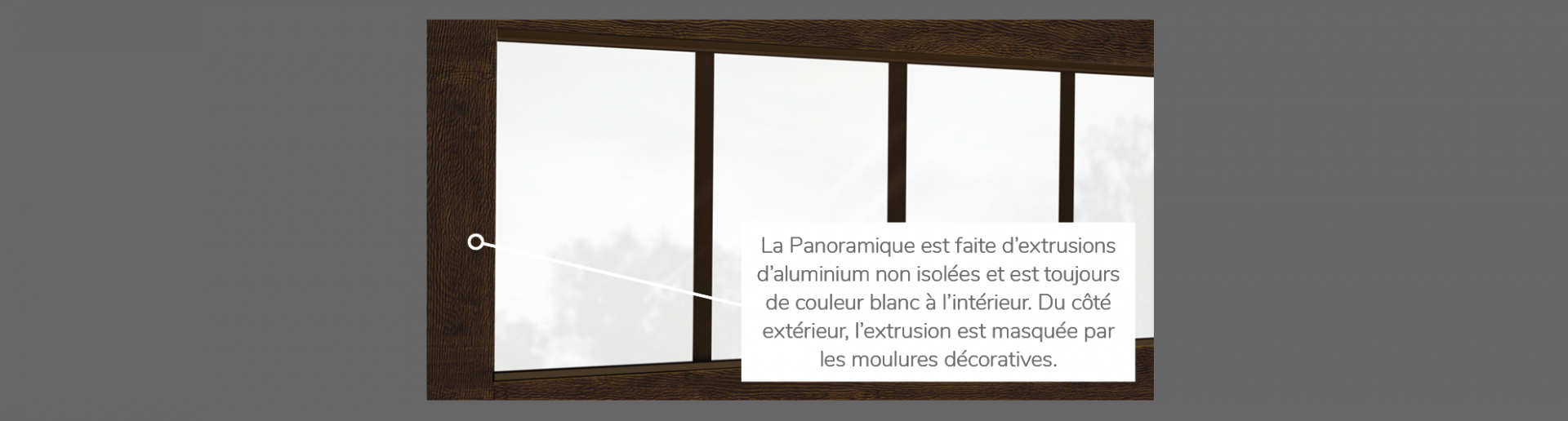 Panoramique 4 rectangles, disponible pour la porte R-16